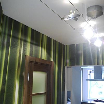 Ремонт квартиры на Королёва. Обои с фотографией бамбука (печать под заказ), передвижные светильники на проволоке
