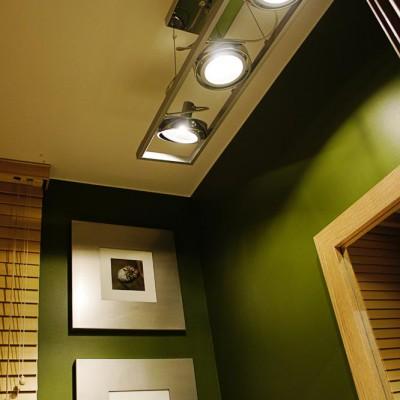 Малый санузел. Потолок из гипрока, светильник с поворотными элементами